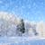 arbre · autoroute · froid · hiver · jour · route - photo stock © byrdyak