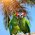 parrot severe macaw on branch on tropical background stock photo © byrdyak
