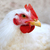 portrait · blanche · poulet · studio · oeil · oiseau - photo stock © byrdyak