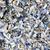 seashells background stock photo © byrdyak