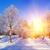 зима · парка · снега · небе · солнце - Сток-фото © byrdyak