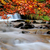 красивой · осень · лес · горные · потока - Сток-фото © byrdyak