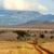 bokor · szavanna · tájkép · nyugat · Kenya · Afrika - stock fotó © byrdyak