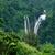 beautiful waterfall in sri lanka stock photo © byrdyak
