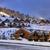 banlieue · beauté · hiver · paysage · forêt · nature - photo stock © byrdyak