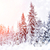 inverno · paisagem · neve · coberto · árvores · sol - foto stock © byrdyak