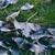 folha · grama · verde · outono · parque · cair - foto stock © c12