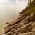 jezioro · brzegu · ontario · Kanada · dwa - zdjęcia stock © ca2hill