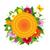 krans · mooie · bloemen · geïsoleerd · vector - stockfoto © cammep