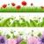 manolya · yaprakları · yeşil · yaprakları · çiçek · ağaç · doğa - stok fotoğraf © cammep