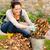 mulher · jovem · folhas · outono · jardim · trabalhos · domésticos - foto stock © candyboxphoto