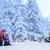 sí · mentés · sebesült · nő · segít · hó - stock fotó © candyboxphoto