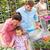 семьи · красочный · цветы · саду · цветок · весны - Сток-фото © candyboxphoto