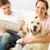resting joyful couple sitting and petting dog stock photo © candyboxphoto