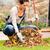young woman raking dry leaves pile backyard stock photo © candyboxphoto