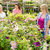 woman shopping for flowers at garden centre stock photo © candyboxphoto