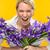 バイオレット · アイリス · 花 · 花弁 · 美しい · 紫色の花 - ストックフォト © candyboxphoto