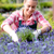 garden center woman in lavender flowerbed smiling stock photo © candyboxphoto