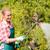 従業員 · 水まき · 植物 · 庭園 · センター · 作業 - ストックフォト © candyboxphoto