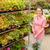 женщину · корзины · цветочный · горшок · магазин · люди - Сток-фото © candyboxphoto