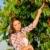 jeune · femme · fille · cerises · jardin · arbre - photo stock © candyboxphoto