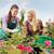 garden center worker give advice woman customer stock photo © candyboxphoto