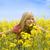 розовый · цветы · весны · счастливым · глазах - Сток-фото © carlodapino