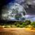 volle · maan · berg · boven · bomen · heldere · hemel - stockfoto © carloscastilla