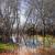 высушите · землю · воды · треснувший · земле · природы - Сток-фото © carloscastilla