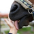 Muzzle of horse and human hand stock photo © castenoid