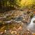 güzel · düşmek · yeşillik · dağ · dere · küçük - stok fotoğraf © Catuncia
