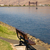 clearwater river park bench draw bridge lewsiton idaho stock photo © cboswell