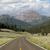 шоссе · Вайоминг · гор · крутой · горные · путешествия - Сток-фото © cboswell