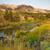 геология · окрашенный · холмы · Орегон · плотный · выстрел - Сток-фото © cboswell