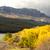 cair · lago · pinho - foto stock © cboswell