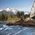 köprü · dere · orman · yeşil · çağlayan · nehir - stok fotoğraf © cboswell