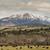vee · groene · landelijk · Oregon - stockfoto © cboswell