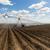 moderne · irrigatie · boerderij · veld · hemel - stockfoto © cboswell