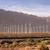 groene · weide · windturbine · mooie · technologie · veld - stockfoto © cboswell