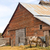 lone horse grazes on feed farm ranch barn corral stock photo © cboswell