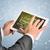 empresário · expectativas · palavra · mãos · negócio - foto stock © cherezoff