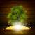 開いた本 · 緑の木 · 日光 · 光 · 木製 - ストックフォト © cherezoff