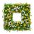 groen · gras · witte · bloemen · vierkante · bloem · gras · abstract - stockfoto © cherezoff