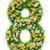 aantal · groen · gras · bloemen · geïsoleerd · witte · 3d · illustration - stockfoto © cherezoff