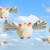 piggy banks flying free in sky stock photo © cherezoff
