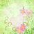 roze · bloemen · romantische · voorjaar · vintage · liefde - stockfoto © cherju