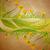 yellow tulips banner on brown grunge background spring frame stock photo © cherju