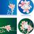 résumé · coloré · cd · couvrir · modèle · musique - photo stock © cherju
