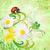 vermelho · joaninha · flores · amarelas · isolado · verão · tempo - foto stock © cherju