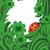 verde · afortunado · cuatro · hoja · irlandés · trébol - foto stock © cherju